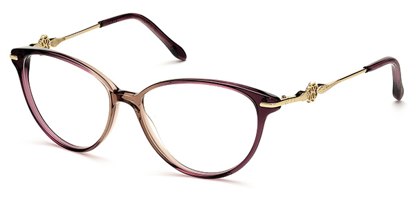 Roberto Cavalli launches 2013-14 optical collection | VisionPlus ...